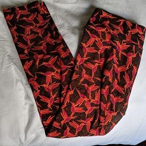 Lularoe hummingbird leggings
